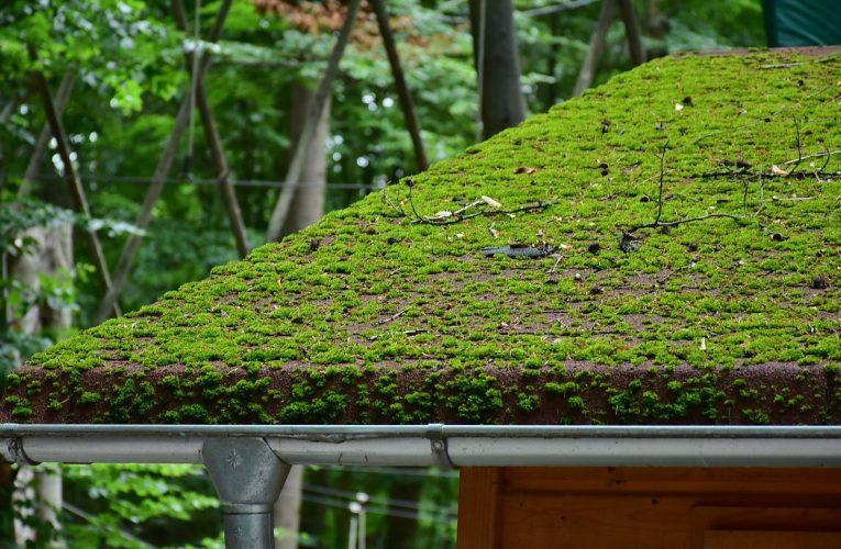 Jak zabrać się do remontu dachu?