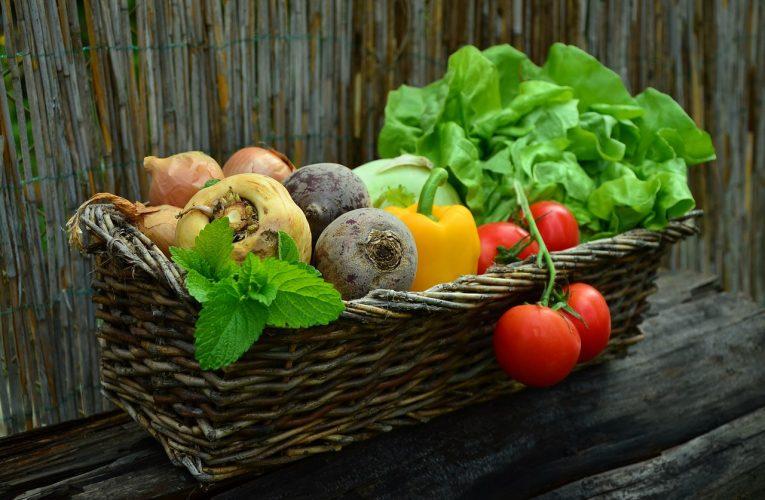 Dla ogrodników-amatorów i profesjonalistów